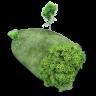 Island-Stone-icon